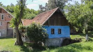 Moara Camarzana (3)